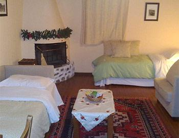Amfikaia Wooden house 35sqm. Amfikleia